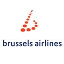 布鲁塞尔航空公司